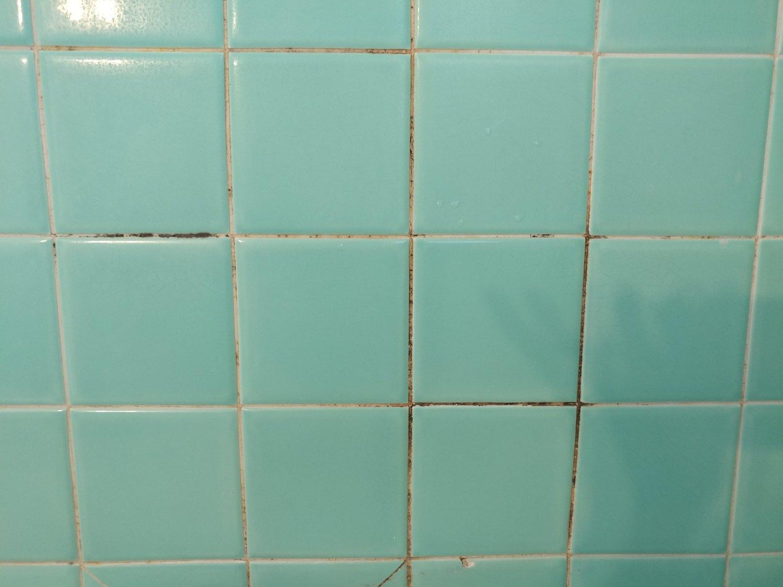 Shower Tile - Before